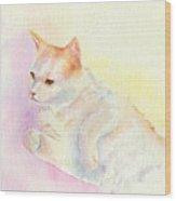 Playful Cat IIi Wood Print