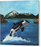 Playful Orca Wood Print