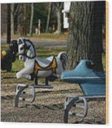 Playground Rides Wood Print