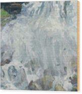 Playing In The Mist - Niagara Falls Wood Print