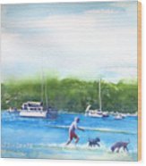 Playing With The Dogs At Rose Bay Wood Print