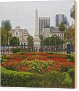 Plaza De Mayo In Buenos Aires-argentina  Wood Print