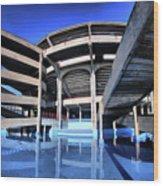 Plaza De Toros Wood Print