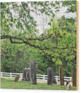 Pleasant Forest Cemetery Wood Print