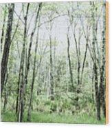 Pleasure Of Pathless Woods - Alt Wood Print