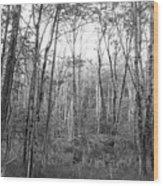 Pleasure Of Pathless Woods Bw Wood Print