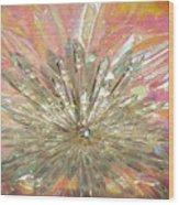 Pleiadian Universe Wood Print