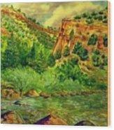 Plein  Air Of Eagle River Wood Print