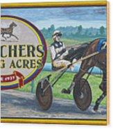 Pletchers Racing Mural Shipshewana Wood Print