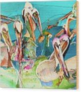 Plethora Of Pelicans Wood Print