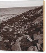 Plimouth Harbor Wood Print