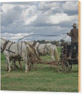 Plowing In Lancaster County Wood Print