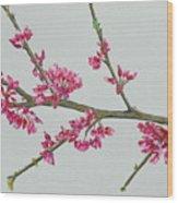 Plum Blossom Wood Print