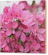 Plum Blossoms Wood Print