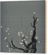 Plum Flower 3 Wood Print