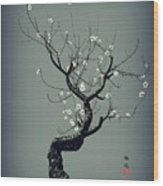 Plum Flower Wood Print by GuoJun Pan
