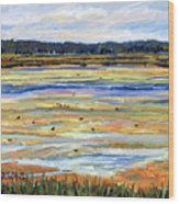 Plum Island Salt Marsh Wood Print