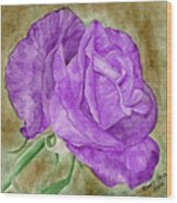 Plum Passion Rose Wood Print