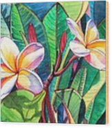 Plumeria Garden Wood Print by Marionette Taboniar