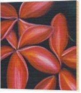 Plumeria Rouge Wood Print