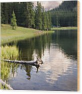 Poage Lake Wood Print