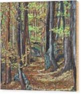 Podzim V Lese Po Pesine Behaj Bezci Wood Print