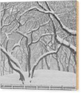 Poets Walk #1 Wood Print