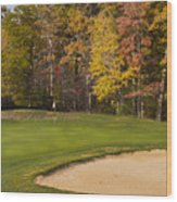 Pohick Green #1 Wood Print