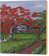Poinciana Blvd Wood Print