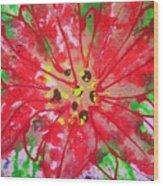 Poinsettia For Christmas Wood Print