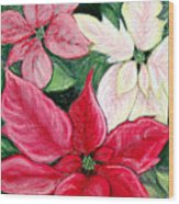 Poinsettia Pastel Wood Print