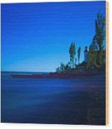 Point Betsie Lighthouse Wood Print