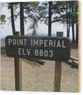 Point Imperial Wood Print