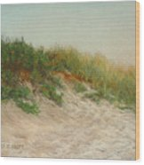 Point Judith Dunes Wood Print