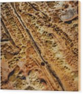 Point Lobos Abstract 106 Wood Print