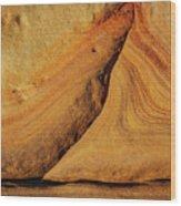 Point Lobos Abstract 108 Wood Print