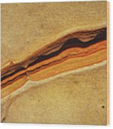 Point Lobos Abstract 111 Wood Print