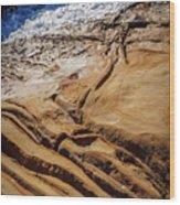 Point Lobos Abstract Wood Print