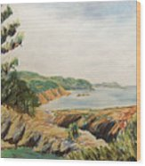 Point Lobos Wood Print by Don Perino