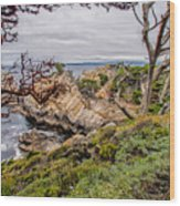 Point Lobos State Reserve Wood Print