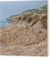 Point Loma Coastline Wood Print