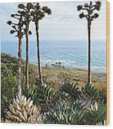Point Loma Lighthouse Overlook Wood Print