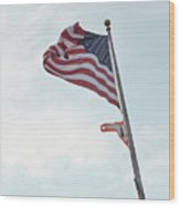 Point No Point American Flag Wood Print