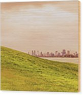Point Ormond To The City Wood Print