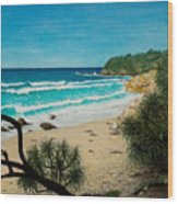 Point Perry Coolum Beach Wood Print