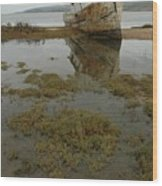 Point Reyes Reflection Wood Print
