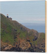 Point Sur Lighthouse Ca  Wood Print