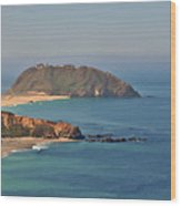 Point Sur Lighthouse On Central California's Coast - Big Sur California Wood Print