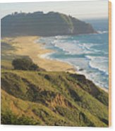 Point Sur National Park Wood Print