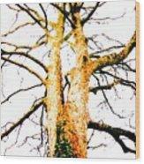 Pointillised Tree Wood Print
